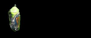 Chrysalis Drug Discovery Logo